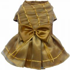 Luxus - Hundekleid Golden Dreams