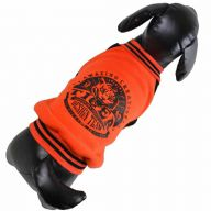 Warmer Hundepullover orange mit Tiger